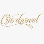 Cardnovel