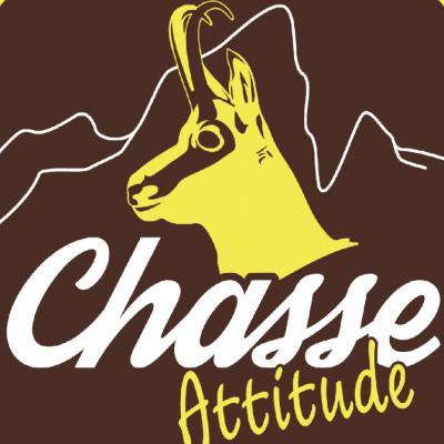 Chasse Attitude